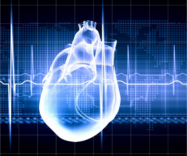 Best Heart Specialist India