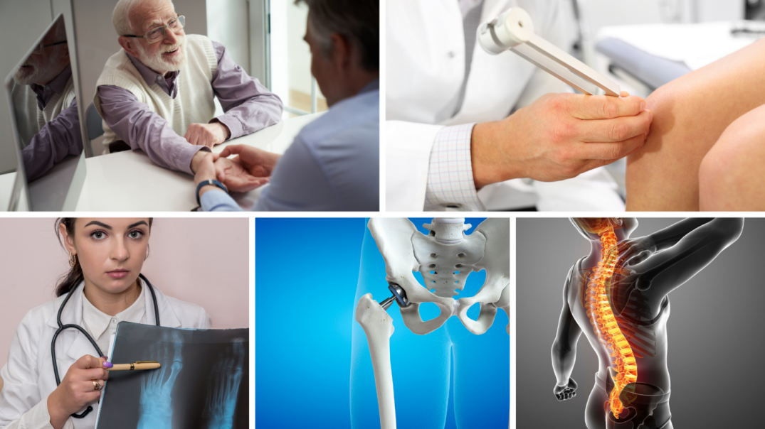Orthopedic Doctor & Surgeon near me Understanding which ...